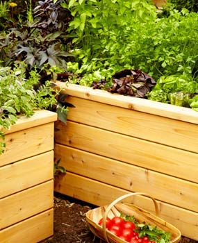 Grow healthy, lush plants with a self-watering planter.