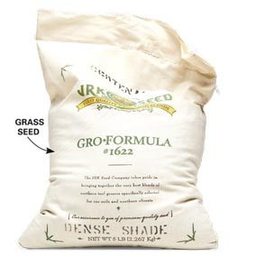 Shade-tolerant grass seed