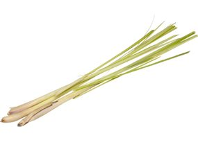 Lemongrass will help keep mosquitos away.