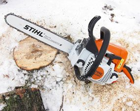 Ground level saw cut on 10-in. tree trunk