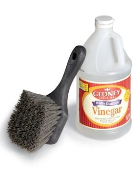 Cleaning brush and vinegar
