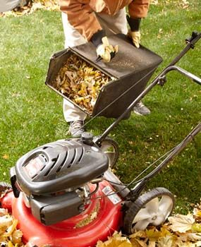 5 Ways Smart Homeowners Deal With Fall Leaves The Family