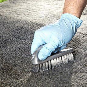 Photo 2: Apply, brush, dry, brush and vacuum