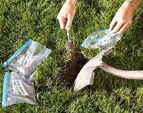 Collecting soil samples before fertilizing a lawn.