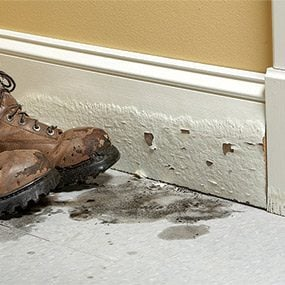Avoid using MDF trim in moist places