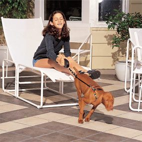 Build a patio with ceramic tile so that it becomes an extension of your living space.