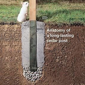 Anatomy of a long-lasting fence post