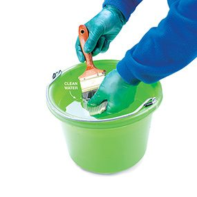 Rinsing a paint brush in a pail of clean water when cleaning a paint brush.