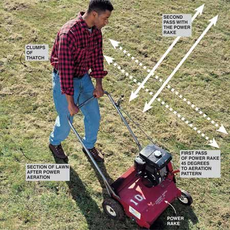 <b>Photo 3: Power rake later in the day</b></br> Prepare soil for reseeding using a power rake. Its solid tines (see close-up photo) slash through any thatch mat and score the surface of the soil. Power-rake only after aeration and in the afternoon, after the morning dew has dried—so the dead grass and roots lift out loosely without clumping. Make two opposing passes with the power rake, each 45 degrees across the pattern used by the power aerator.