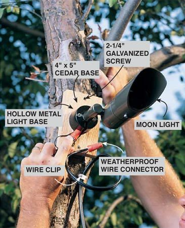Special Lights for Special Effects & Low-voltage outdoor lighting | The Family Handyman