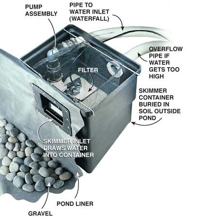 Skimmer and filter system
