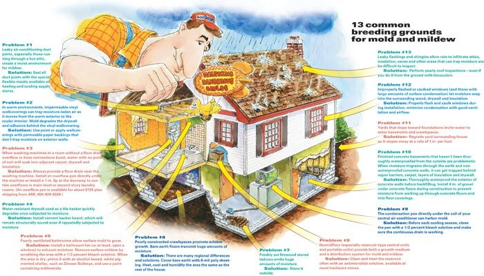 13 common breeding grounds for mold.