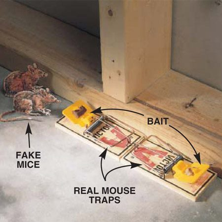 <b>Photo 2: Place the traps against the wall</b></br> An alternate trap position puts the traps parallel to the wall with the bait at opposite ends. Place traps under sinks or appliances, and in closets or behind furniture, since mice tend to avoid open areas. Chocolate, nutmeat or cheese makes good bait. The expanded-trigger type traps shown in these photos work best.