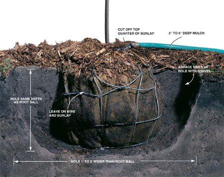 Hole cutaway