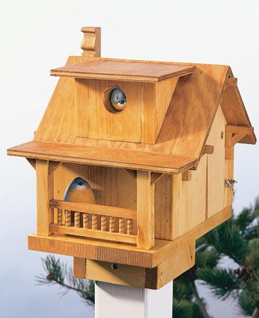 <b>The finished birdhouse</b></br> An oil finish leaves the wood looking natural, but protected from rot. The wood color will turn gray over a year or so.