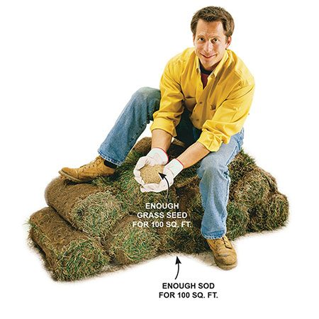 <b>100 sq. ft. of sod vs. seed for 100 sq. ft.</b></br> <p>More isn't always better. You'll get better results in highly shaded areas using 1/2 lb. of grass seed than laying 11 rolls of sod weighing 25 lbs. each.</p>