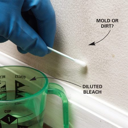 <b>Test suspicious-looking spots</b><br/><p>Most mold is unmistakable, but sometimes small or largely hidden growths just make a surface look dirty. </p>  <p>For a quick test, dip a swab in diluted bleach (1 part bleach, 16 parts water) and dab it on the wall. If the spot quickly lightens (or keeps coming back after cleaning), assume it&#39;s mold.</p>  <p>Mold test kits are available that detect the presence and identify the type of mold, but they won&#39;t help determine the cause or what to do about it.</p>