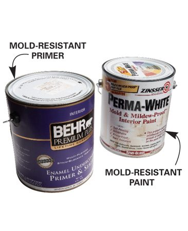 10 tips for removing mold and mildew the family handyman for Mold resistant insulation