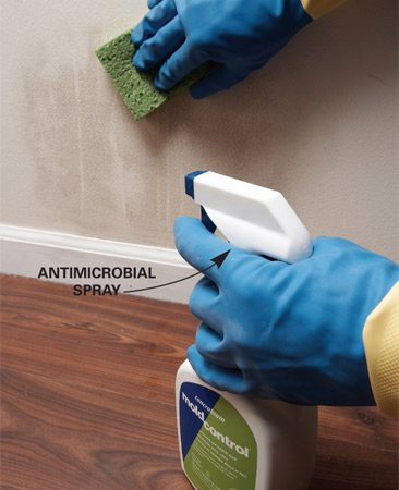 <b>Use an antimicrobial spray</b><br/>Once the moisture has been dried up, clean and spray the area with an antimicrobial treatment to prevent mold from coming back. In basements or other larger areas with musty odors, it may be more effective to fog the entire room. (Concrobium Mold Control is an antimicrobial treatment available at home centers and hardware stores that can be dispensed by spray or with a fogging machine. Visit <a href='http://www.concrobium.com'>concrobium.com</a> for more information.)