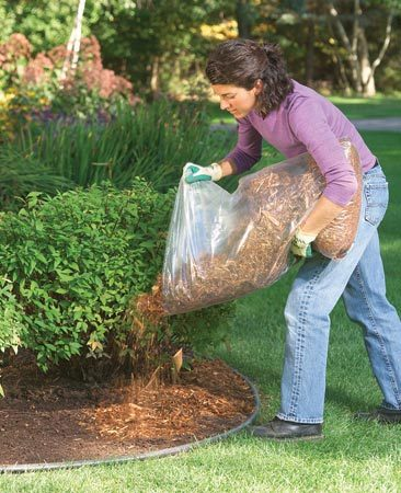<b>Top dress with cedar or cypress mulch</b></br> If you're mulching a big area, use a cheaper hardwood mulch for most of it, then top-dress it with cedar or cypress. You can also top-dress old, ratty-looking mulch—just sprinkle on a fresh 1-inch layer and it'll look brand new. That way you're not paying for something you don't see.