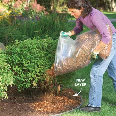 <b>Apply mulch</b></br> Pull all weeds before mulching and add at least a 4-in. layer to keep weed seeds from germinating.