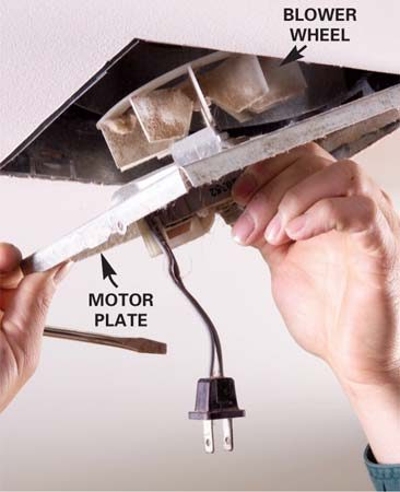 <b>Photo 2: Remove the motor</b></br> Unplug the motor and remove the plate that supports it. The plate will tip out of the housing after you release a tab or remove a retaining screw.