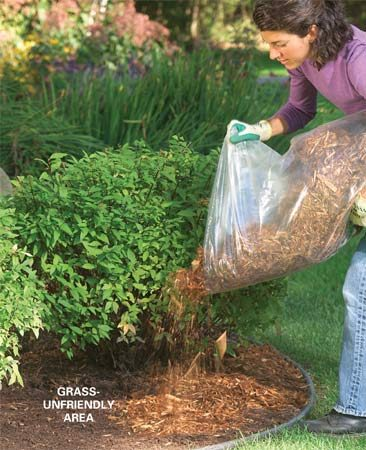 <b>Try mulch, not grass</b><br/>Mulch and planting beds are often better for shady areas and around trees where grass won't grow well.