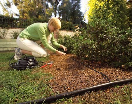 <b>Soaker drip line</b></br> Also called emitter tubing, drip line consists of 1/2-in. or 1/4-in. tubing with built-in drippers. It's available with emitters spaced different distances apart for different flow rates. Drip line is great for vegetable gardens or rows of plants. You can use it to encircle shrubs and large plants, or lay it out in a grid pattern as a substitute for sprinklers in a densely planted flowerbed. Use 1/4-in. drip line for maximum flexibility.