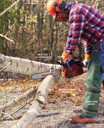<b>Photo 2: Start cutting downward on branches under pressure. </b></br> <p>Cut off branches that are under pressure by first cutting downward through one-third of the branch.</p>