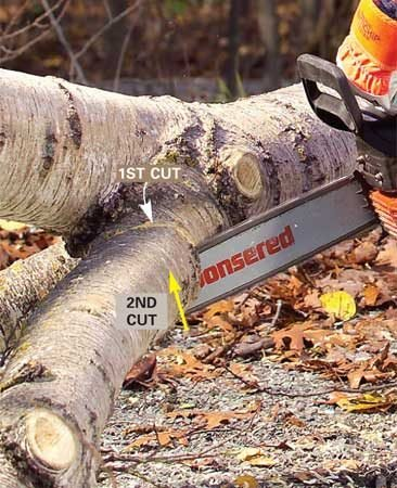 <b>Photo 3: Finish the cut by sawing upward. </b></br> <p>Finish the cut by sawing upward to meet the first cut. Be prepared for the trunk to roll or drop.</p>