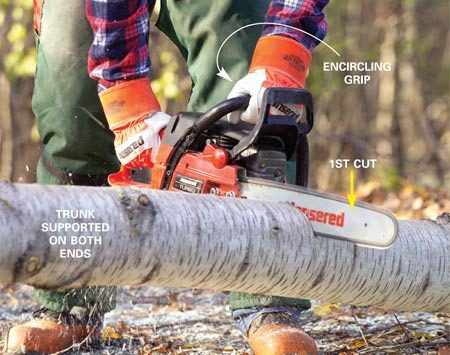 <b>Photo 4: Start cutting downward in the trunk.</b></br> <p>Cut trunks that are supported at both ends by making a downward cut one-third the diameter of the trunk.</p>