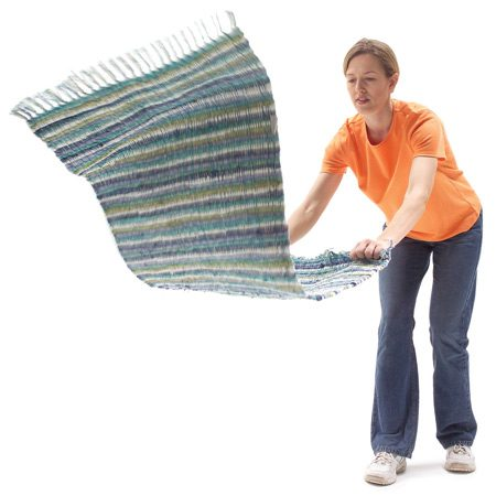 <b>Shake your rugs</b></br> Rugs are the biggest dust collectors. Shake them outside three to four times a year.