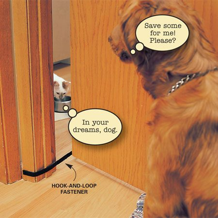<b>Use hook and loop tape to keep the dog out</b></br> Does your dog eat your cat's food? Put a stop to the double-dipping by moving your cat's dish into a different room that has a door. Attach adhesive-backed hook-and-loop fasteners to the back of the door and to the  front of the trim. After filling the cat's dish,  hook up the fasteners so the door only opens 5 in. Now your cat can come and go and eat his meal in peace.