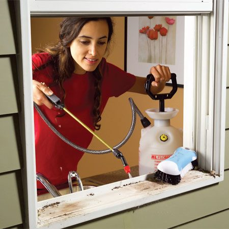 <b>Garden sprayer cleans hard-to-reach spots</b></br> A garden sprayer can be a mini power washer for cleaning windowsills and other hard-to-reach spots. Before you fill the tank with water, be sure to rinse it repeatedly to flush out any chemical residue.