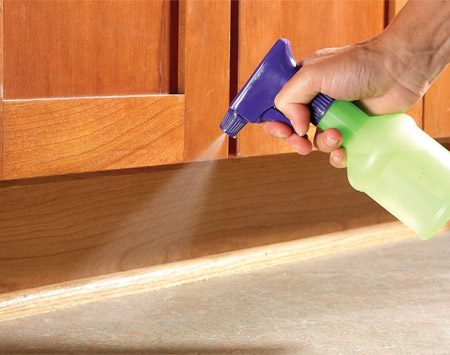 <b>Spray vinegar and water on trails</b><br/>Disrupt the ant trail so more ants won&#39;t follow it inside. Mix vinegar and water, then spray it where you&#39;ve seen ants to cover the ant scent.