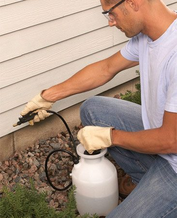 <b>Spray outdoor poison below lap siding</b><br/>Spray outdoor insecticide on the foundation walls, and on and under the first course of lap siding to keep ants from entering the house.