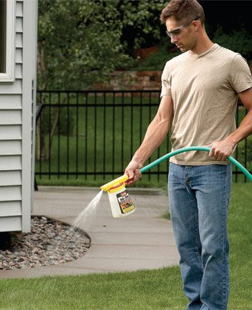 <b>Apply insecticide to lawn and shrubs</b><br/>Spray a lawn and garden insect killer on the grass within one day of mowing. Also spray on trees and shrubs. Spray on a calm day to prevent drift.
