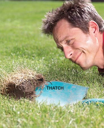 <b>Photo 1: Check the turf</b></br> Slice the turf grass with a shovel and pry it back. If the thatch depth measures more than 3/4 in., aerate at least 3 in. deep.