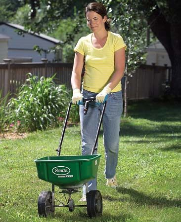 <b>Photo 2: Treatment</b></br> Treat your lawn with an insecticide if the count is six to 10 grubs in a square foot. Follow the manufacturer's directions carefully. Or consult with a yard service.