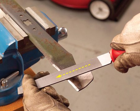 """<b>Photo 4: Sharpen blade with file</b></br> Clamp the blade in a vise and sharpenthe cutting edge with a mill bastard file, held at the same cutting angle as before. File until the blade is """"butter knife"""" sharp."""