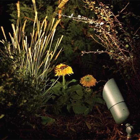 <b>D: Staked bullet lights</b></br> Staked bullet lights (12 volt) are designed for ground-level lighting to silhouette plants or illuminate architectural features of the deck or house. They have a swivel mount for exact focusing. Use a 35- to 50-watt spot or flood lamp.