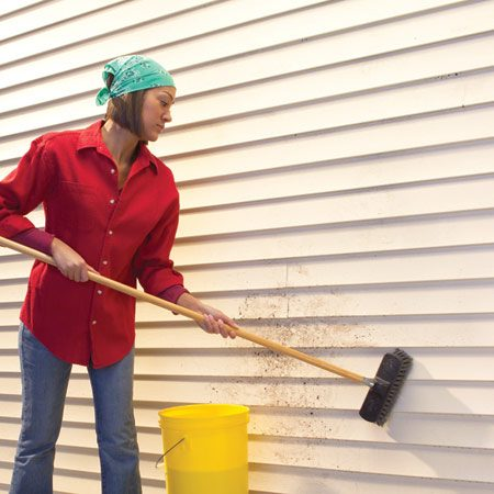 <b>Photo 1: Basic cleaning</b></br> Scrub siding from the bottom up with a soft-bristle brush.
