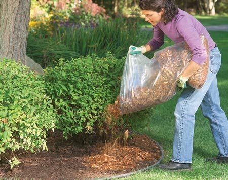 <b>Mulching a planting bed</b></br> A 4-in. layer of mulch will eliminate most weeds.