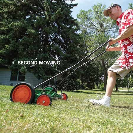 <b>Photo 1: Timing </b></br> Let grass growth determine the best time for a preemergence herbicide. Apply it after your second regular mowing in the spring.