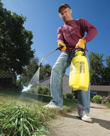 <b>Spraying</b></br> Lightly mist masses of immature crabgrass with a postemergence herbicide. Usually it's too embedded to pull without yanking lots of your desirable grass with it.