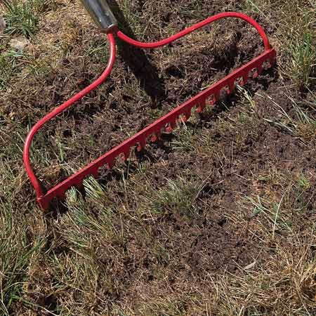 <b>Photo 1: Expose bare soil</b></br> Kill off patches of lawn with nonselective herbicide in the fall if more than half the area is weeds. When it's safe to replant (check the herbicide label), soak the patch with water and rake off dead grass and thatch to bare the soil.