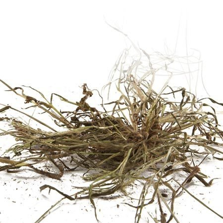 <b>Dying crabgrass</b><br/>Crabgrass is one example of a common, troublesome weed.