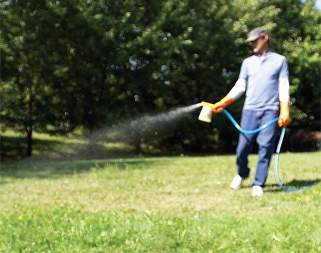 <b>Photo 3: Heavy weed infestation</b><br/>Cover large areas fast with a dial sprayer attached to a garden hose. Avoid spraying on a windy day so it won&#39;t drift onto (and kill) nearby plants.