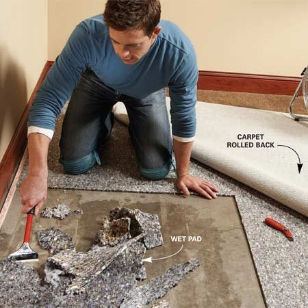 <b>Photo 1: Dry the carpet</b></br> Dry out wet carpet right away. Fold back the carpet and start a fan. Cut around the soaked section of the pad and scrape it up.