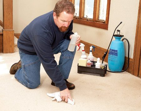 <b>2. Everything's included</b></br> Quality pros include furniture moving, vacuuming (some charge extra for this, so check), routine spot removal, preconditioning and deodorizing as part of a standard cleaning package.